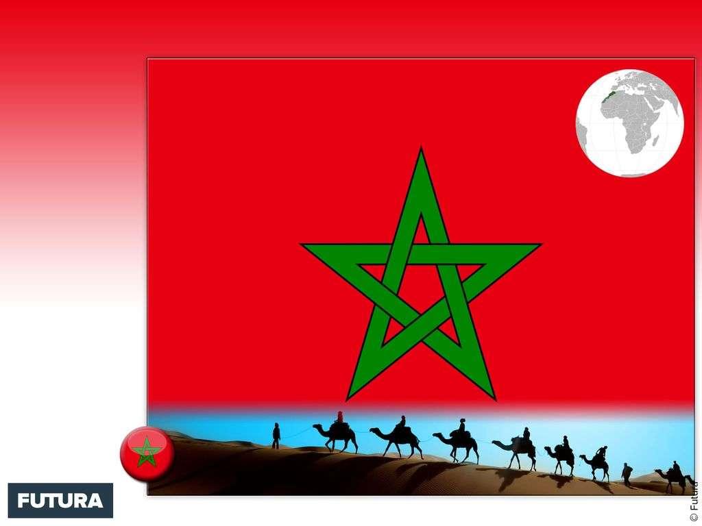 Drapeau : Maroc