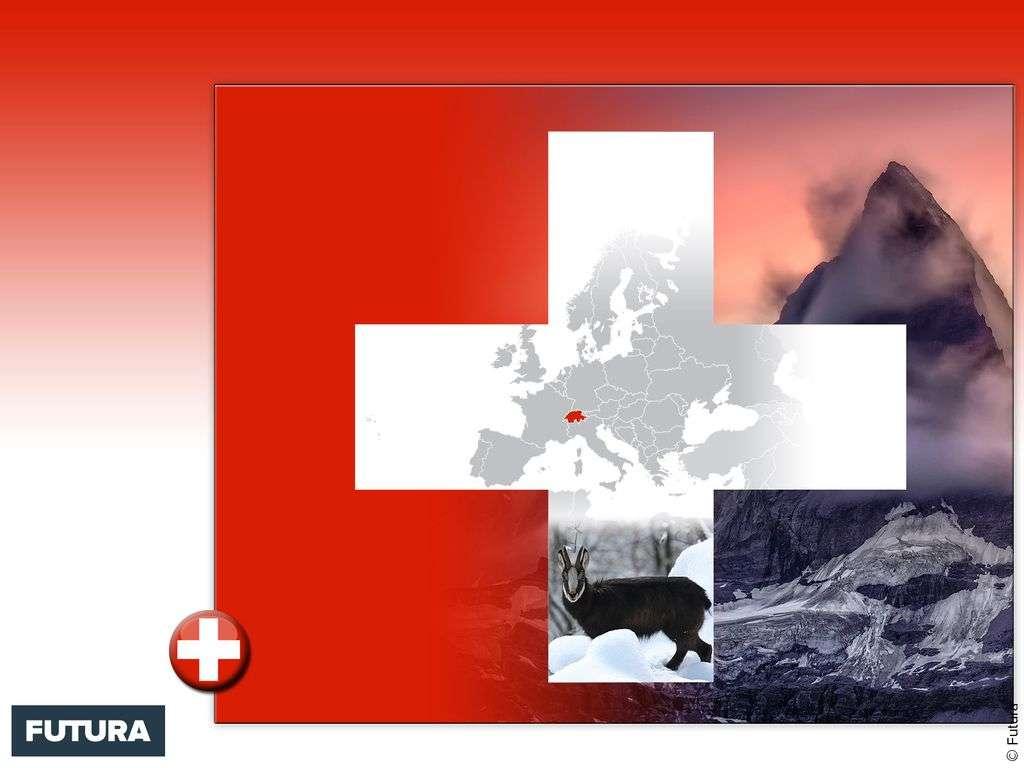 Drapeau : Suisse