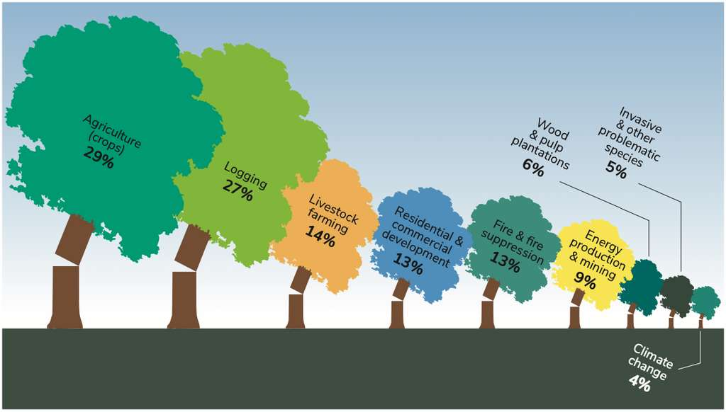 Les principales menaces qui pèsent sur les arbres. © BGCI