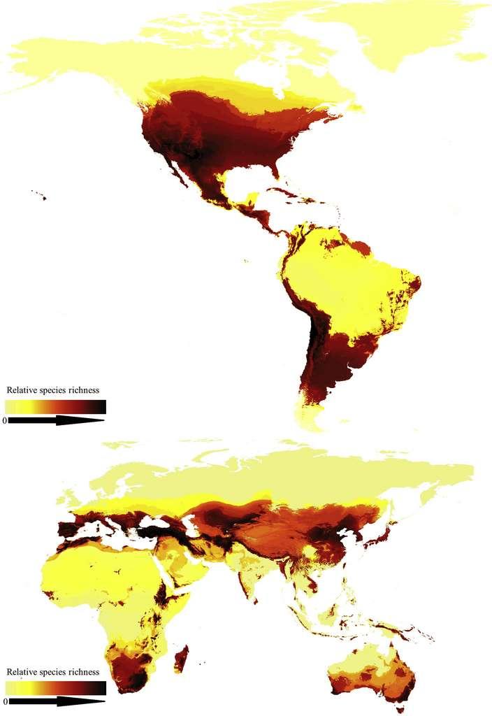 Plus une zone tend vers le rouge et le noir, plus la diversité d'espèces d'abeilles est grande. © Michael C. Orr, Alice C. Hughes. Published by Elsevier Inc.