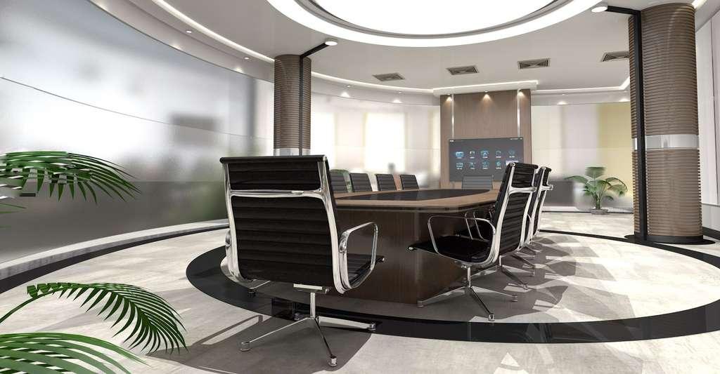 Pour améliorer la productivité, il semble que la présence de plantes dans l'environnement de travail soit bénéfique. © Cdu445, DP