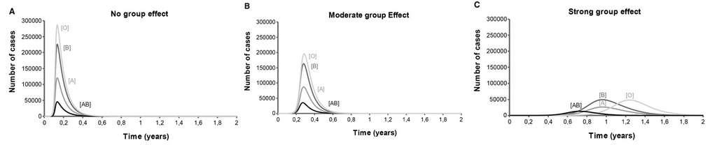 Nombre de cas et durée de l'épidémie. A : sans effet de polymorphisme ABO ; B : Effet modéré du polymorphisme ABO et C : fort effet du polymorphisme ABO. © Patrice Guillon et al, Glycobiology, 2008