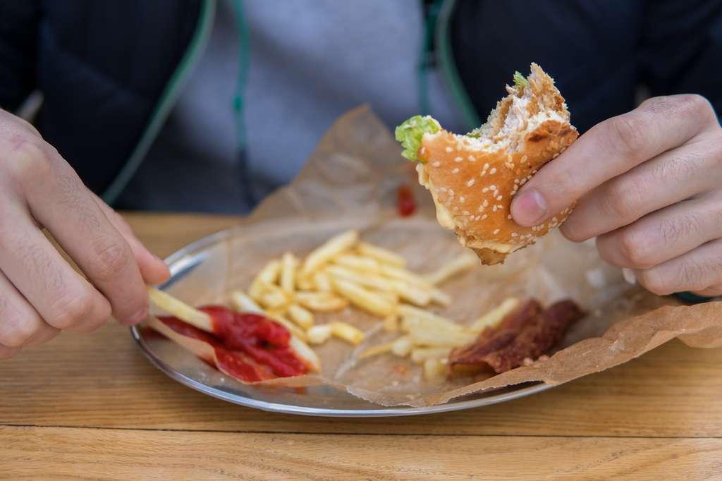 Une alimentation déséquilibrée appauvrit le microbiote intestinal et entraine des conséquences sur la santé. © Igor Kardasov