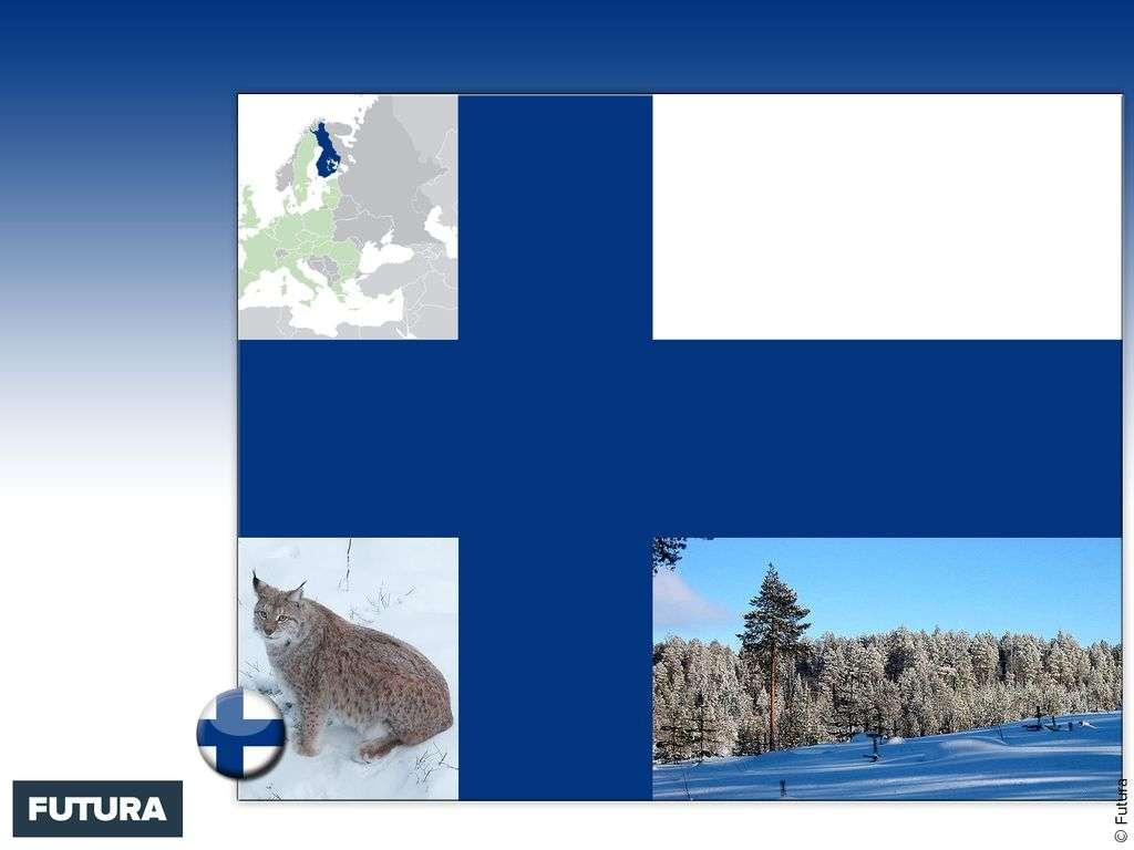 Drapeau : Finlande