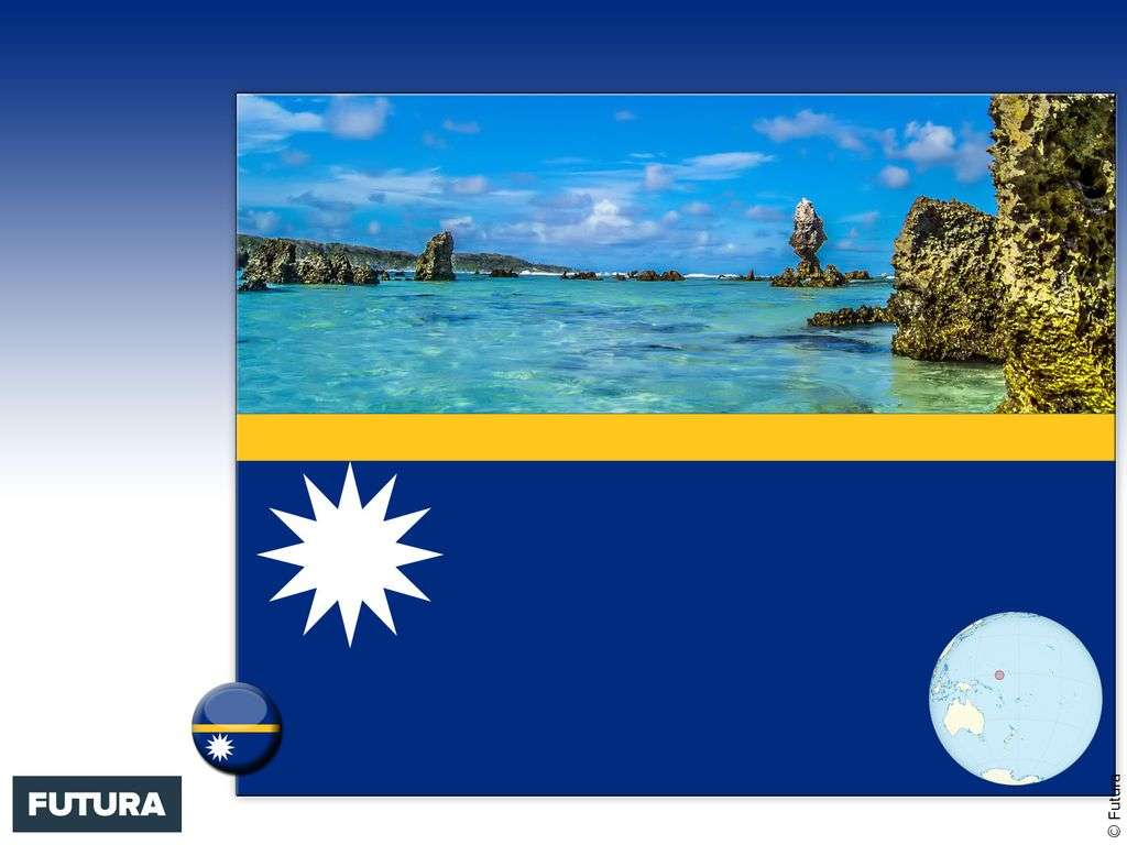 Drapeau : Nauru