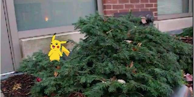 Actuellement, les personnages de Pokémon Go apparaissent flottants dans le décor réel. Grâce à la technique développée par le MIT, ce Pikachu pourrait bondir sur le buisson et l'agiter de façon réaliste. © MIT CSAIL, Abe Davis, YouTube