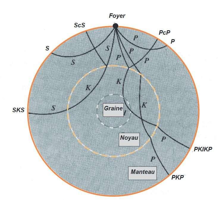 Les différentes trajectoires des ondes sismiques et leur complexité induite par la structure interne de la Terre. © musée de sismologie de Strasbourg