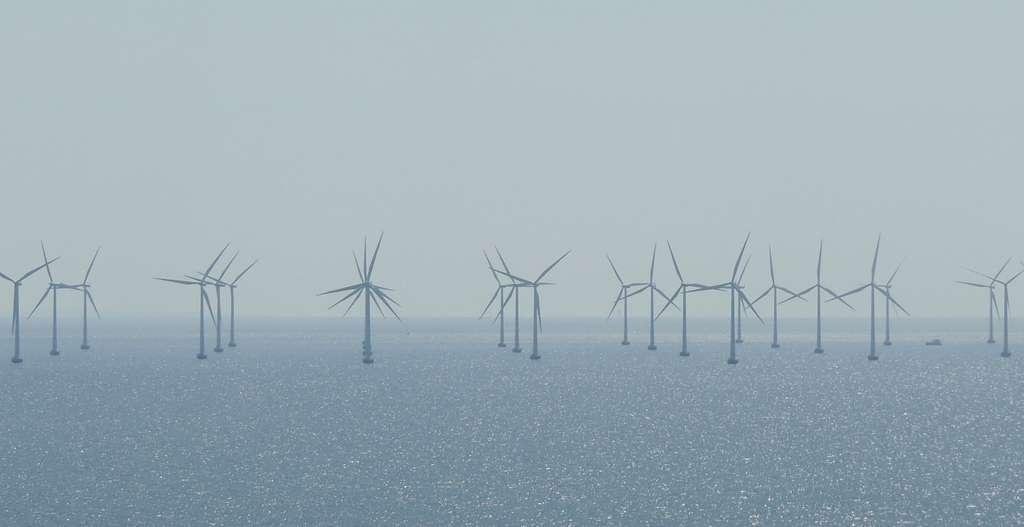 En matière d'énergies marines renouvelables, la France dispose de nombreux atouts naturels. Et notamment de 11 millions de km2 d'eaux sous sa juridiction, dont 97 % en Outre-mer. La ressource connue y est ainsi estimée à quelque chose entre 2.000 et 3.000 MW. © fill, Pixabay, Pixabay License