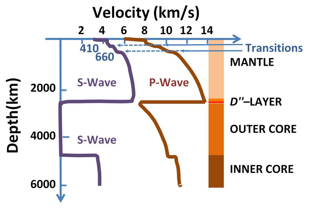 Vitesse de propagation des ondes P (en rouge) et S (en violet) en fonction de la profondeur et des couches terrestres. On voit notamment l'incapacité des ondes S à se propager dans le noyau externe (outer core) © Brews ohare, Wikimedia Commons, CC by-sa 3.0