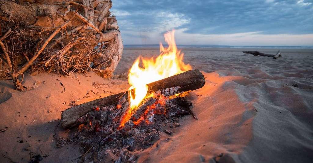 Parcourez les ouvrages consacrés au chauffage par biomasse. © Chrisaram2, Pixabay, DP