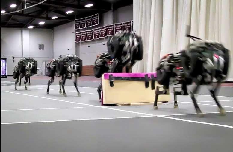 Cheetah, le robot du MIT qui court jusqu'à 16 km/h. © Haewon Park, Patrick Wensing, Sangbae Kim, DR