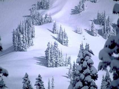 Les avalanches peuvent aussi se produire spontanément, sans action extérieure, sous les seuls effets des contraintes existantes dans le manteau neigeux. © DR