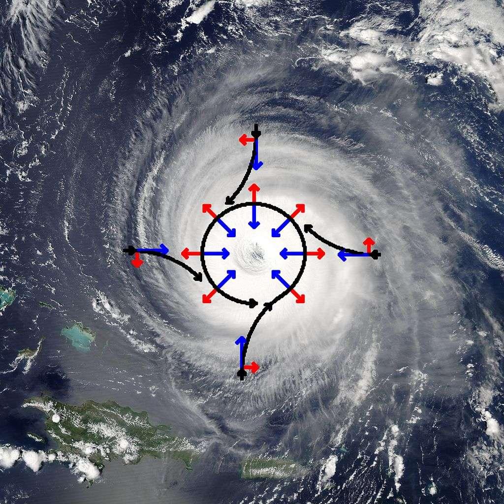 Illustration des forces impliquées dans la rotation des vents de la dépression tropicale Isabel, survenue dans l'hémisphère nord. La trajectoire des vents est indiquée en noir et résulte de la somme de la force de pression (en bleu) et de Coriolis (en rouge). Le sens de rotation des cyclones est différent dans les deux hémisphères. © Titoxd, Wikipédia, GNU 1.2