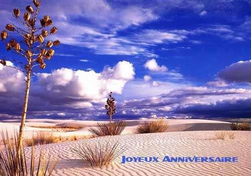 Beauté des sables