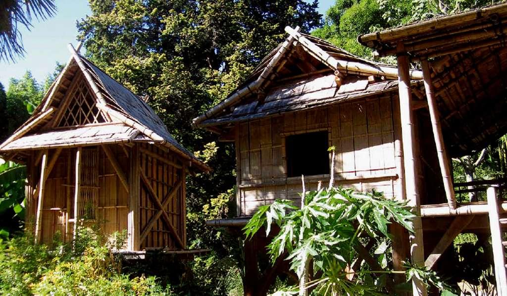 Les maisons Lao de la bambouseraie d'Anduze sont entièrement réalisées en bambous. © AB - Tous droits réservés