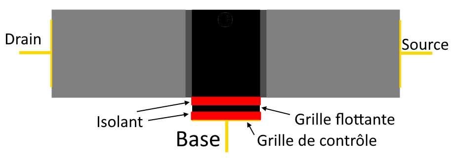 La mémoire flash est constituée de transistors améliorés pour pouvoir conserver les données. Dans la base d'un transistor classique, une grille flottante est isolée par un oxyde. Cette grille peut être chargée (0) ou déchargée (1) en électrons. Pour cela, il faut forcer le passage des électrons à travers la barrière de l'isolant. © Sylvain Biget