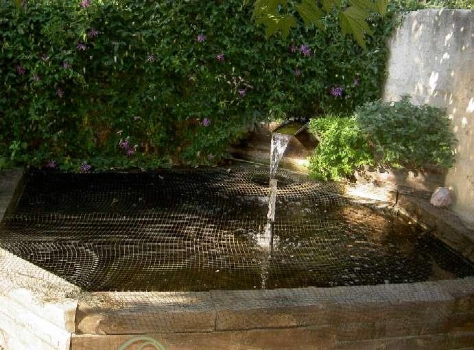 Ramassez régulièrement les feuilles mortes tombées dans le bassin d'eau. © Bassin Traviesa, décorervotrebassin.com