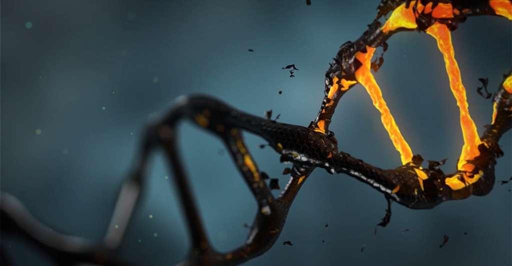 Les chercheurs appellent histones, des protéines que l'on trouve dans le noyau des cellules et autour desquelles l'ADN est enroulé. Modifier ces histones modifie l'accès du matériel génétique au mécanisme de transcription d'une cellule. © lisichik, Pixabay, CC0 Creative Commons