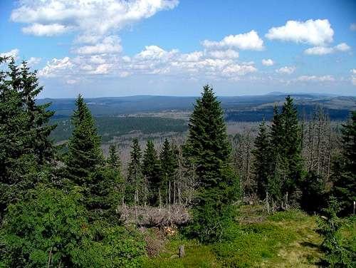 Forêt en Bavière. © Mrass GNU FDL 1.2