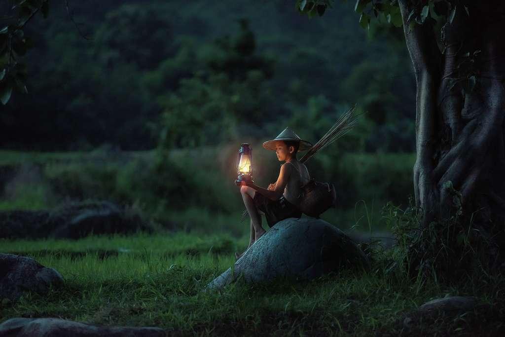 14,6 millions d'hectares. C'est la superficie de forêts naturelles que le Vietnam compte restaurer. Pour l'heure, l'engagement le plus important au monde en la matière. © sasint, Pixabay License