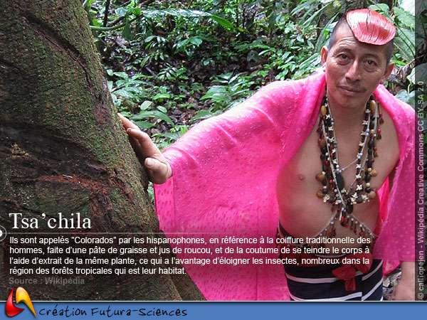 Tsa'Chila