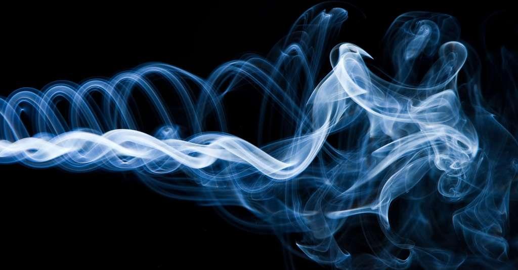 Qu'est-ce que la théorie du chaos ? Et l'effet papillon ? © Frutta, Shutterstock