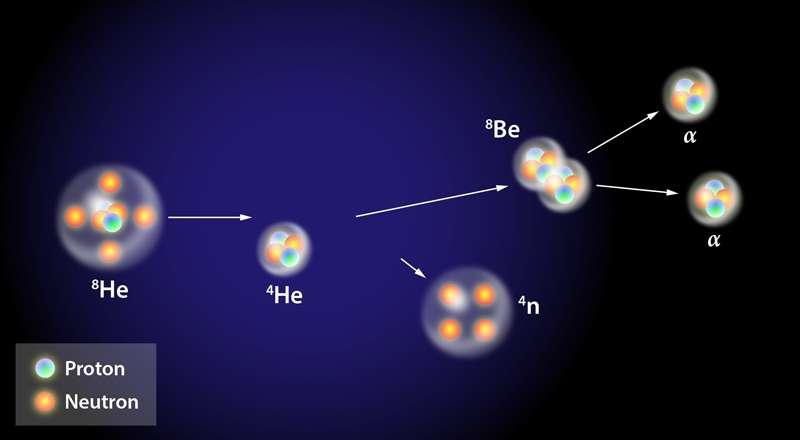 La réaction de production présumée du tétraneutron (4n), au Riken : un noyau très riche en neutrons d'hélium 8 (8He) entre en collision avec un noyau d'hélium 4 (4He). © Alan Stonebraker, APS
