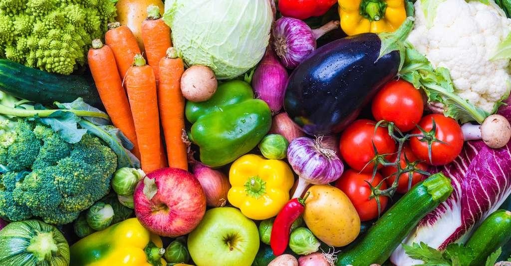 Pour doper son capital santé, rien de tel qu'une alimentation saine incluant des fruits, des légumes et quelques noix. © travelbook, Fotolia