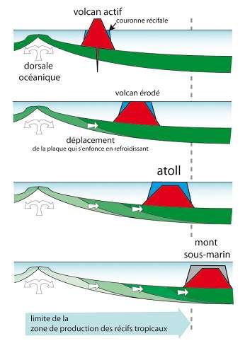 Figure 10 : Certains volcans dits « de point chaud » ont une origine très profonde, dans le manteau terrestre.