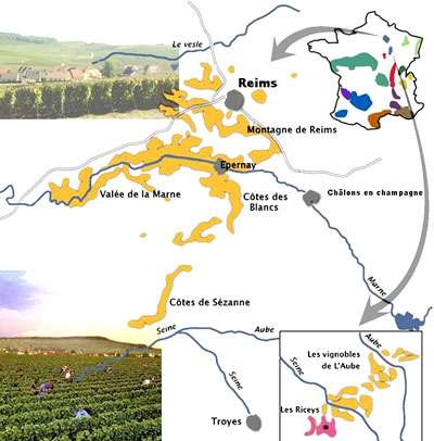 Carte d'un vignoble