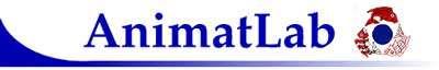 AnimatLab, le laboratoire de recherche dédié aux évolutions robotiques. © AnimatLab