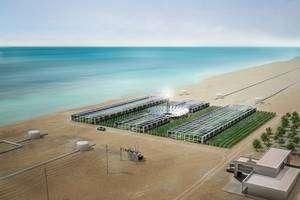 Cliquer pour agrandir. La centrale pilote du projet devrait voir le jour en 2010. Son but sera de prouver la faisabilité technologique et économique du projet, ainsi que d'explorer d'autres opportunités possibles. © Sahara Forest Project