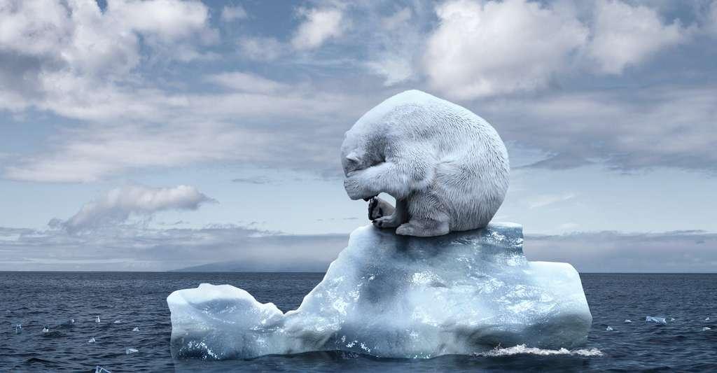 Les travaux des chercheurs de l'University College London (Royaume-Uni) et de leurs collègues s'intéressent uniquement aux changements de températures et de régimes de précipitations. Ils n'incluent pas, par exemple, les impacts des vagues de chaleur ou de la fonte de la glace en Arctique. © karmaknigh, Adobe Stock
