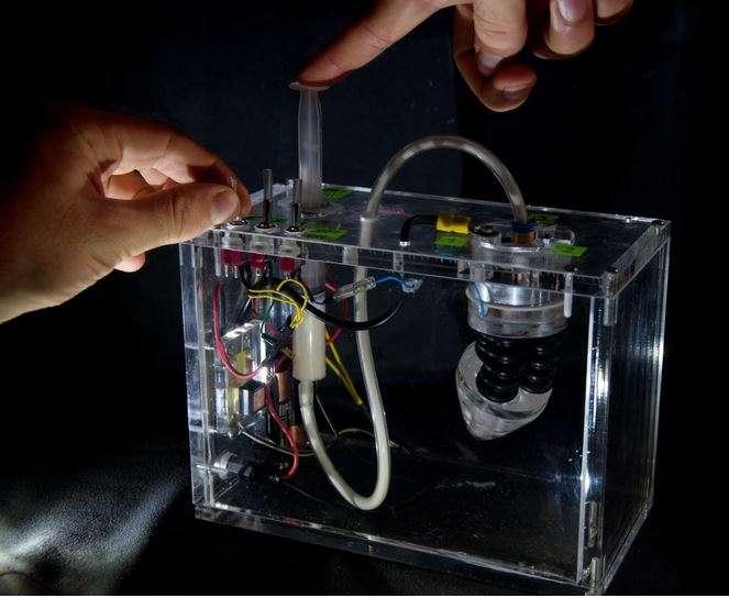 L'équipe pluridisciplinaire du projet Plantoid travaille sur divers prototypes de racines robotisées capables de simuler le développement et la faculté d'adaptation des racines organiques. Un véritable défi technique qui implique un éventail de technologies et de matériaux afin de produire un appendice à la fois souple, en mesure de croître et capable de détecter les éléments biologiques qui composent le sol. © Projet Plantoid