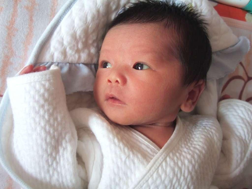 Différents facteurs peuvent altérer le développement du bébé dans le ventre de sa mère : l'âge de la mère, sa consommation de tabac ou d'alcool... et l'environnement atmosphérique. © Namowen, StockFreeImages.com