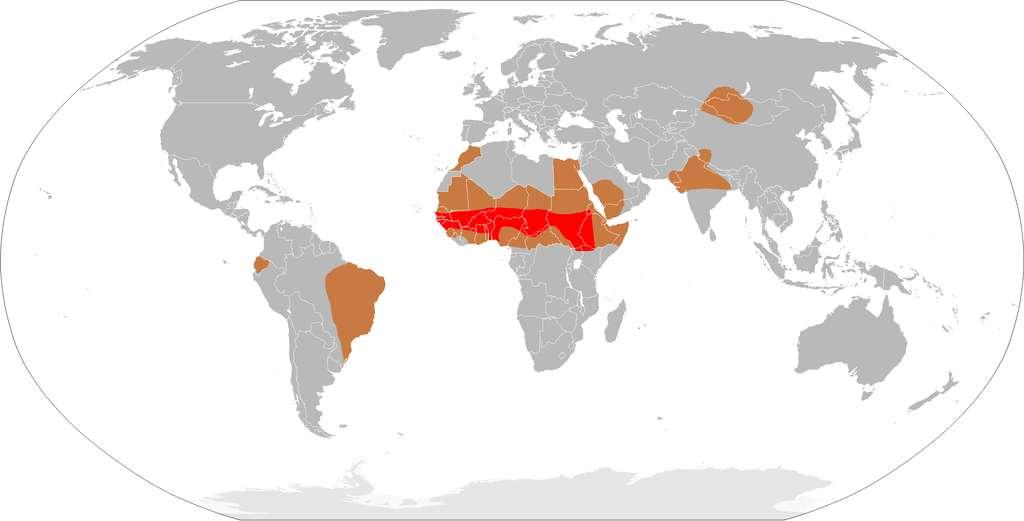 Démographie de la méningite à méningocoque. En rouge : ceinture de la méningite. En marron : zone épidémique. En gris : zone avec cas sporadiques. © Leevanjackson, dérivé du CIA World Factbook, Wikipédia, DP
