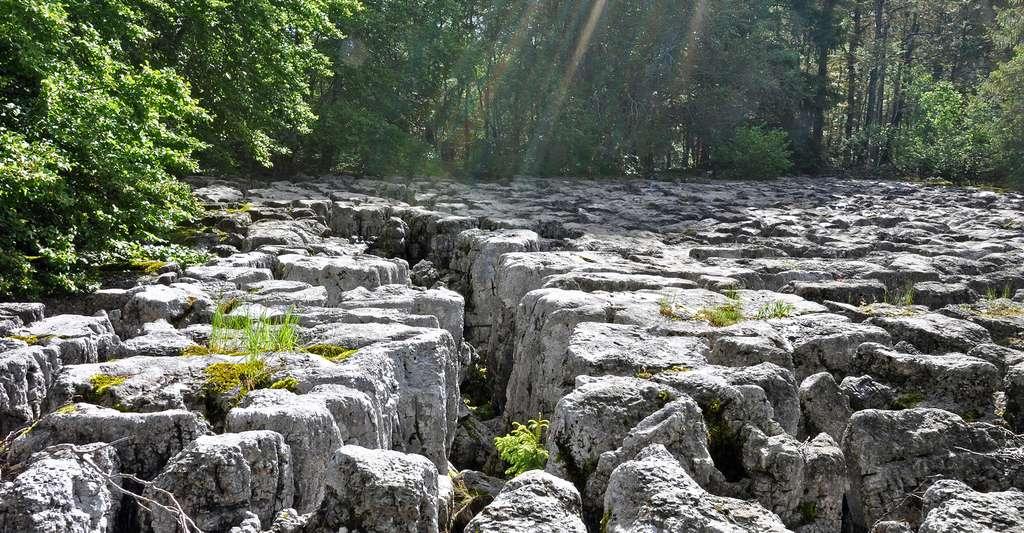 Lapiaz, dolines, ouvala : quelles sont les différentes formations karstiques ? Ici, lapiaz du Sillet (Jura). © Poncetdespontets, Wikimedia Commons, CC by-sa 4.0