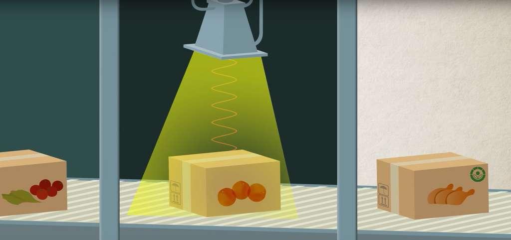 L'irradiation permet de détruire les pathogènes dans les aliments et de ralentir la maturation des légumes. © IAEAvideo, YouTube