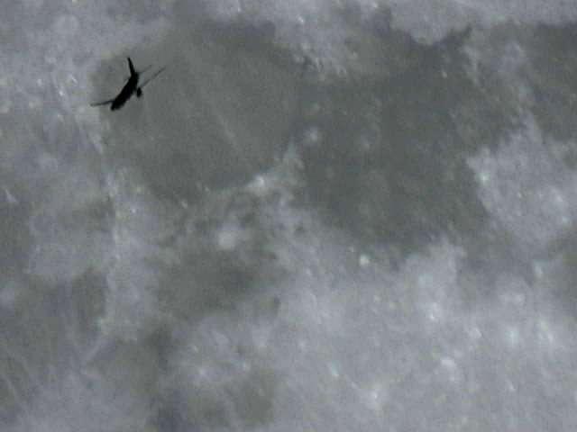 La Lune et l'avion