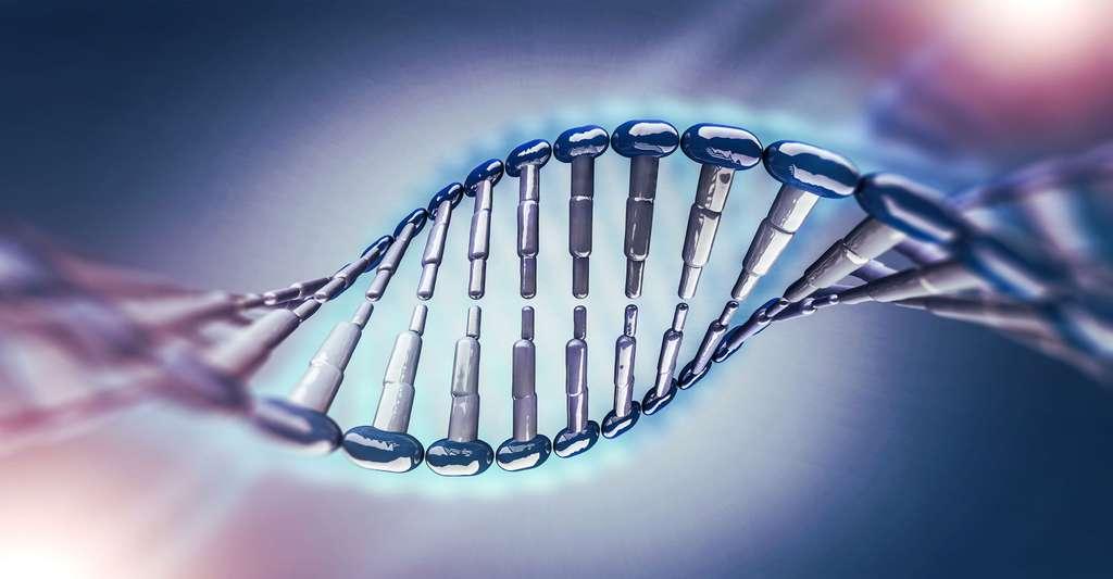 La spéciation, ou comment une nouvelle espèce apparaît. Ici, représentation de l'ADN. © Polesnoy, Fotolia