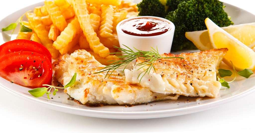 La dorade sébaste est un poisson de profondeur, souvent au menu des repas de cantine. © Jacek Chabraszewski, Fotolia
