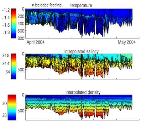 Température de la couche de surface en fonction de la saison et taux de salinité entre mars et juin 2004. © DR