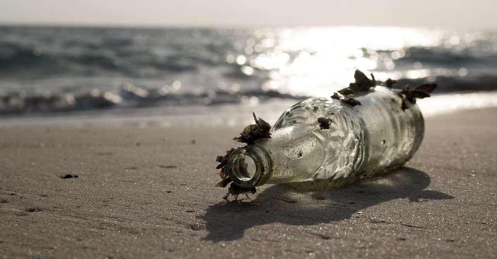 Près de 300.000 tonnes de déchets plastiques flotteraient dans nos océans. Des déchets qui survivent là pendant des centaines d'années, mettant en péril les écosystèmes. © THANAGON, Fotolia