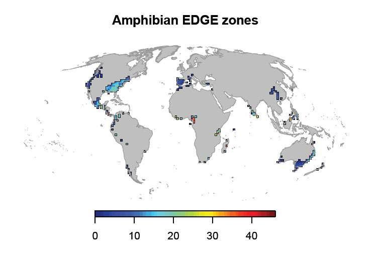 Cartographie mondiale de la richesse en espèces d'amphibiens présentant des traits évolutifs uniques, et qui sont menacées d'extinction. © Safi et al., 2013, Plos One