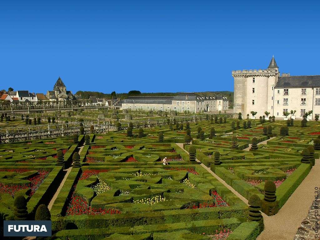 Jardin du château de Villandry
