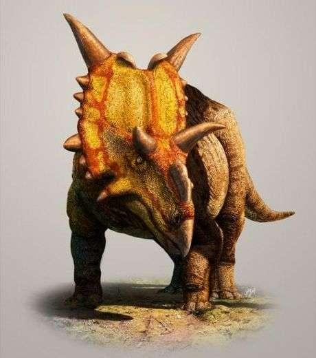 L'artiste Julius Csotonyi nous livre sa vision de Xenoceratops foremostensis, un dinosaure herbivore découvert au Canada qui ressemble fortement à son cousin le tricératops. Il faisait six mètres de long et aurait pesé jusqu'à deux tonnes. © Julius Csotonyi, 2012