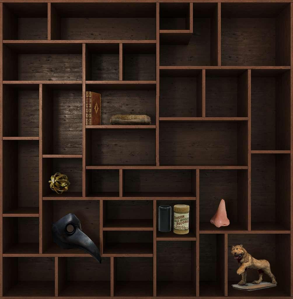 Et de six ! Rendez-vous dans deux semaines pour un nouveau chapitre du Cabinet de curiosités. © nosorogua, Adobe Stock, Futura