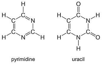 Une comparaison entre les molécules de pyrimidine et d'uracile. © Nasa