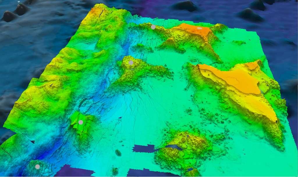 Une des images produites grâce aux résultats de la campagne de 2010. Les couleurs (fausses) indiquent les profondeurs (le jaune pour les plus faibles, le bleu plus les plus grandes). La fosse des Mariannes se distingue très bien, à gauche. On remarque quatre massifs, en vert et surmontés d'un point rond. À leur base, la profondeur du canyon remonte. © University of New Hampshire Center for Coastal and Ocean Mapping/Joint Hydrographic Center