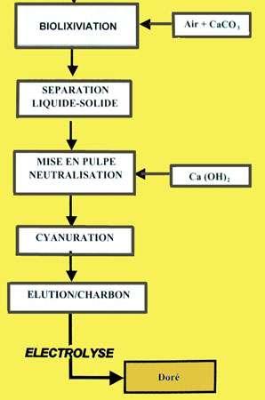 Biolixiviation, autre schéma du procédé.